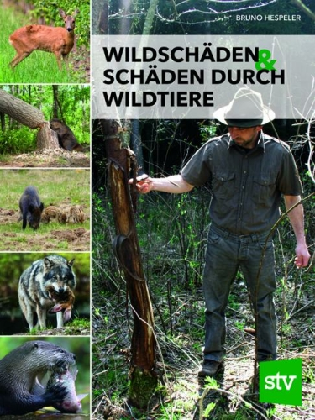 Wildschäden & Schäden durch Wildtiere